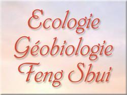 Ecologie, Géobiologie, Feng Shui